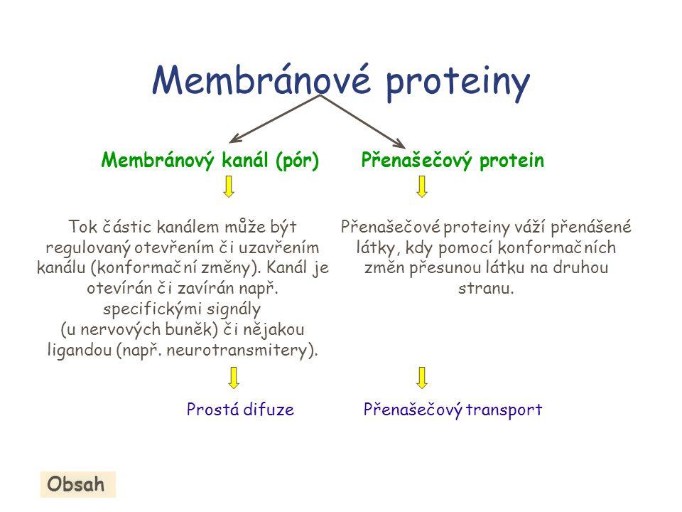 (u nervových buněk) či nějakou ligandou (např. neurotransmitery).