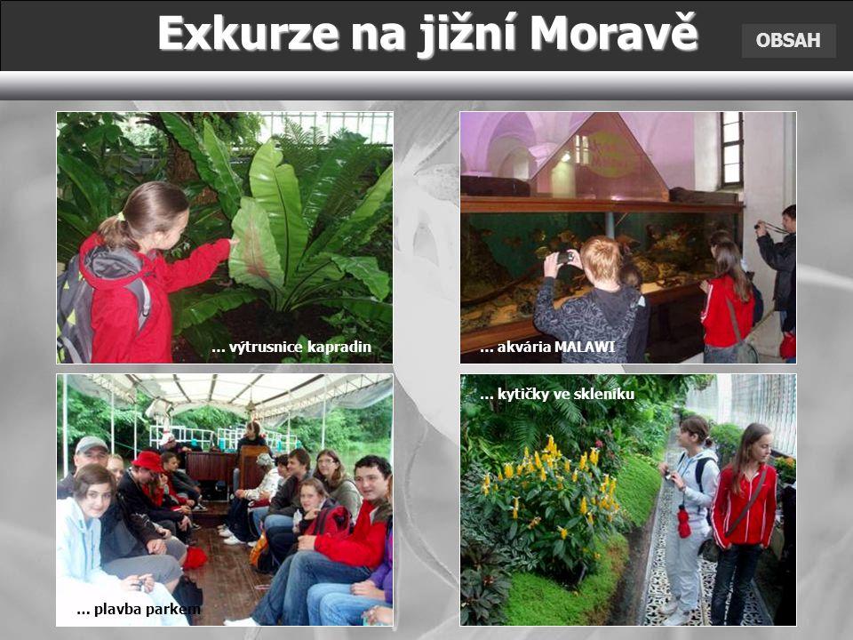 Exkurze na jižní Moravě