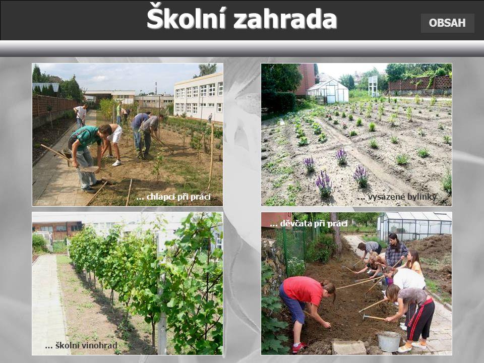 Školní zahrada OBSAH … chlapci při práci … vysázené bylinky
