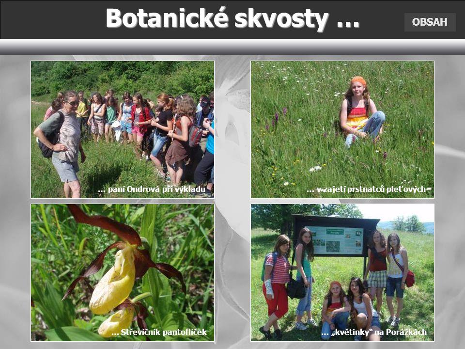 Botanické skvosty … OBSAH … paní Ondrová při výkladu