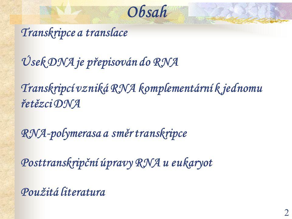 Obsah Transkripce a translace Úsek DNA je přepisován do RNA