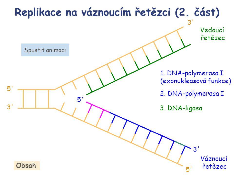 Replikace na váznoucím řetězci (2. část)