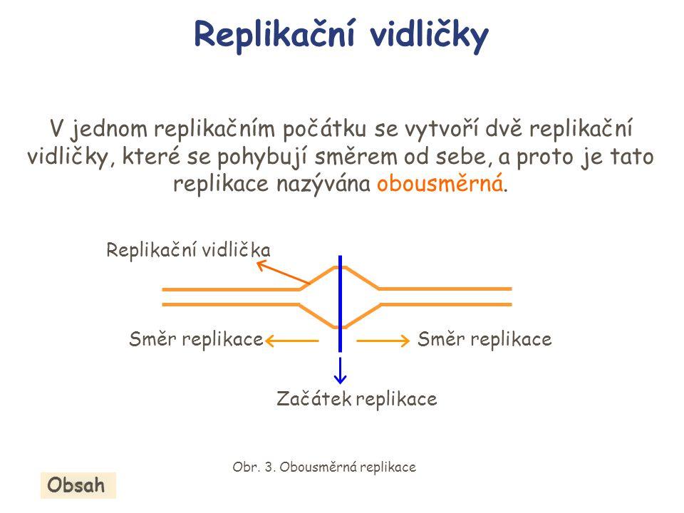 Obr. 3. Obousměrná replikace
