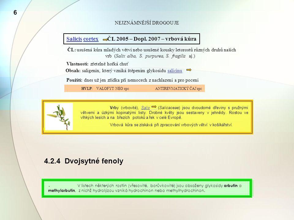 6 NEJZNÁMNĚJŠÍ DROGOU JE. Salicis cortex ČL 2005 – Dopl. 2007 – vrbová kůra.