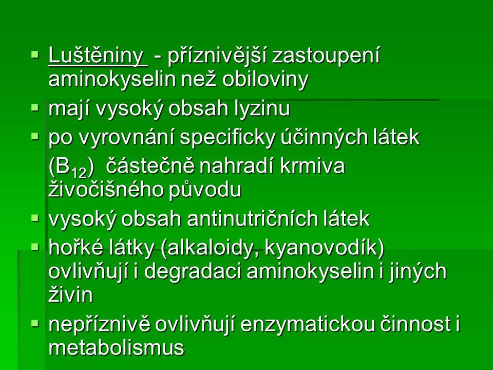 Luštěniny - příznivější zastoupení aminokyselin než obiloviny
