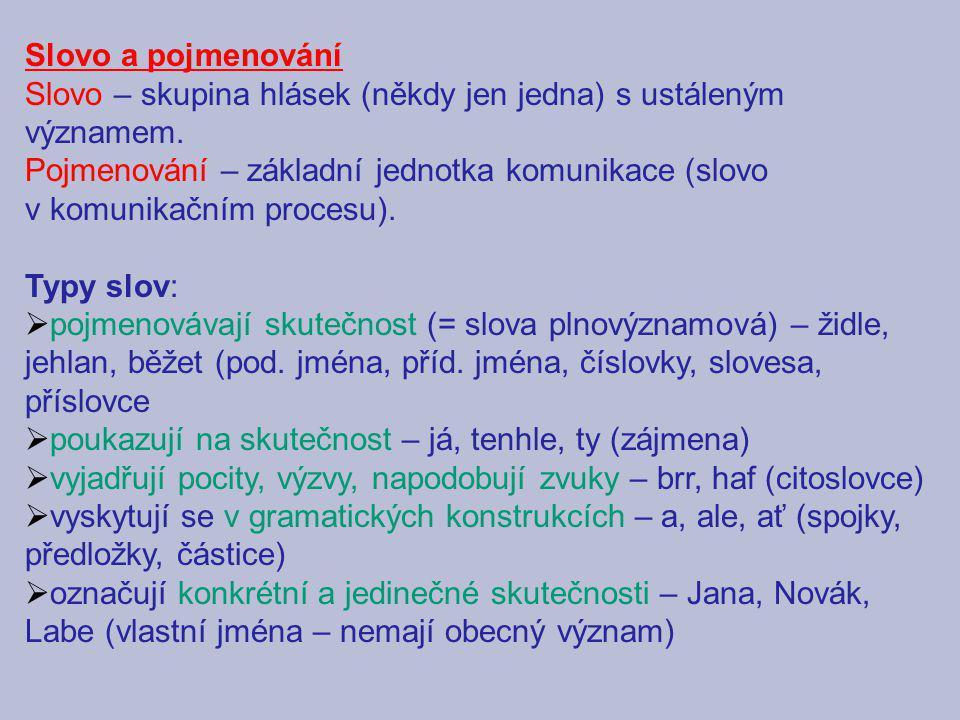 Slovo a pojmenování Slovo – skupina hlásek (někdy jen jedna) s ustáleným významem. Pojmenování – základní jednotka komunikace (slovo.