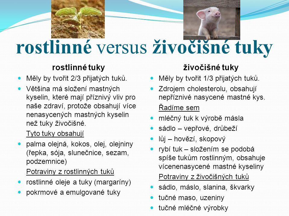 rostlinné versus živočišné tuky