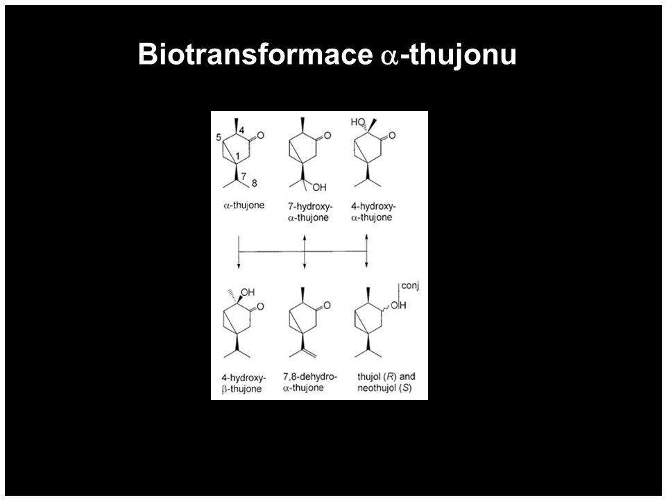 Biotransformace -thujonu