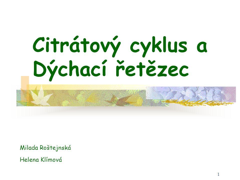 Citrátový cyklus a Dýchací řetězec