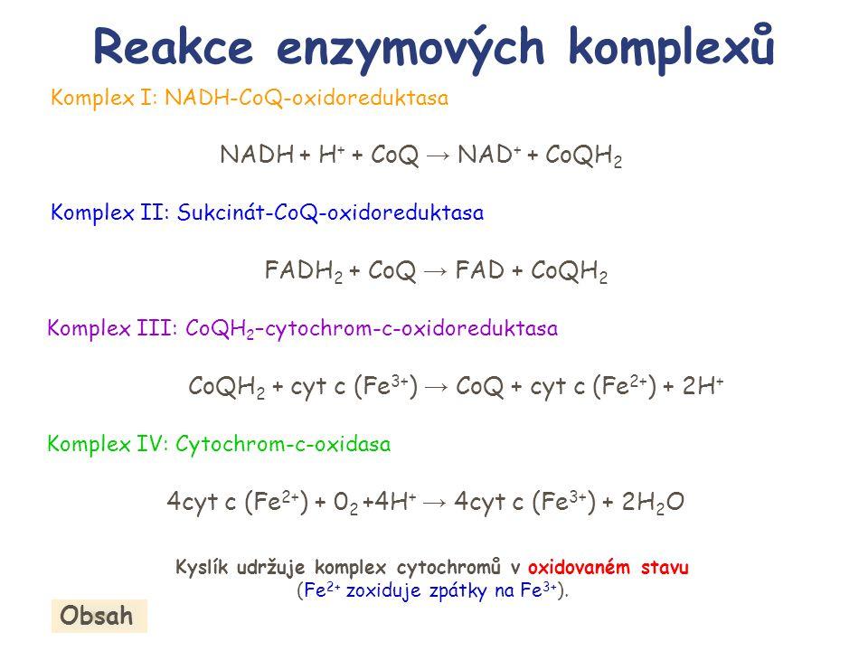 Reakce enzymových komplexů