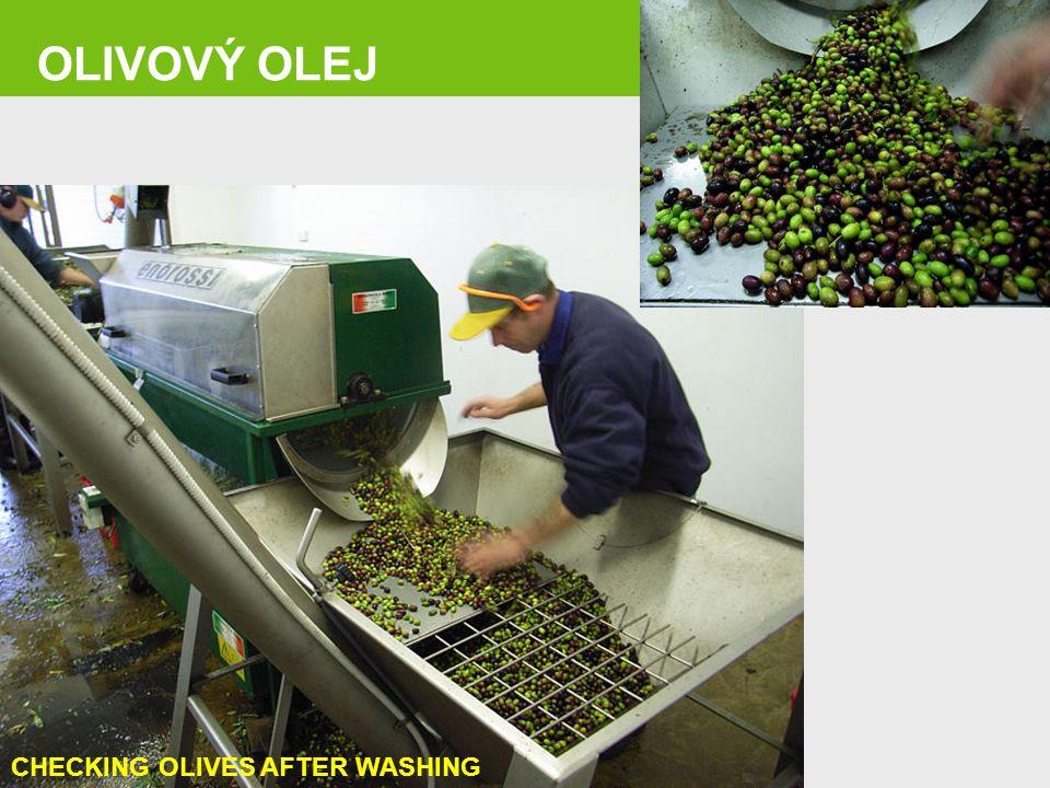 OLIVOVÝ OLEJ Page 17 CHECKING OLIVES AFTER WASHING 17
