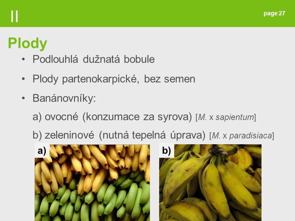 II Plody Podlouhlá dužnatá bobule Plody partenokarpické, bez semen