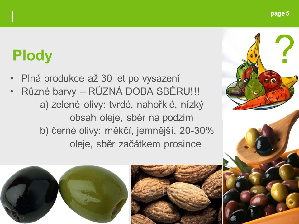 I Plody Plná produkce až 30 let po vysazení