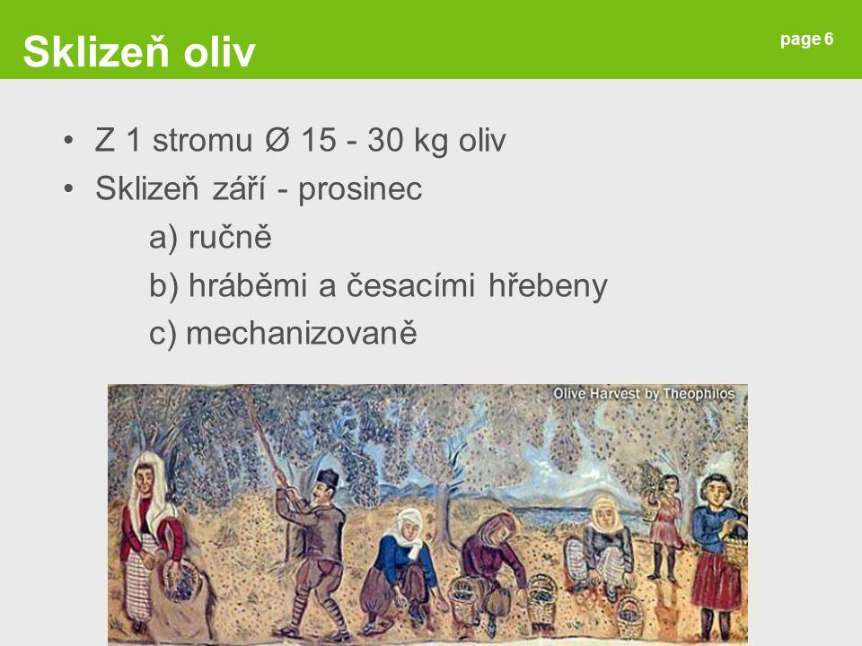 Sklizeň oliv Z 1 stromu Ø 15 - 30 kg oliv Sklizeň září - prosinec