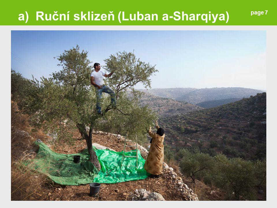 a) Ruční sklizeň (Luban a-Sharqiya)