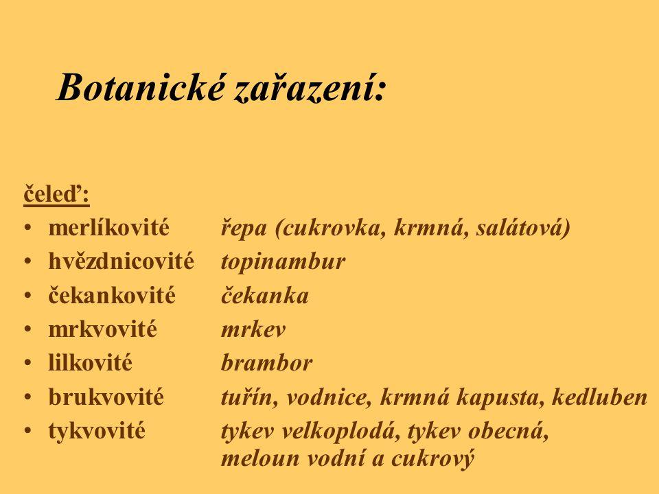 Botanické zařazení: čeleď: