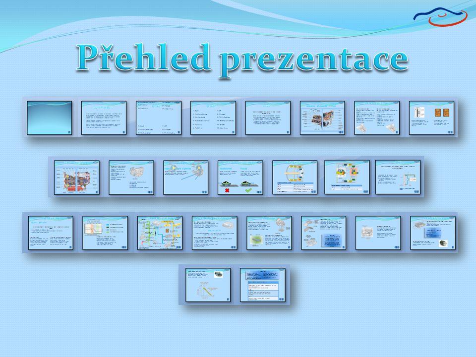 Přehled prezentace