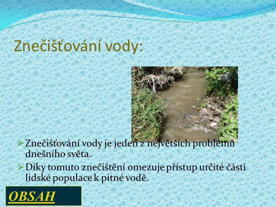 Znečišťování vody: OBSAH