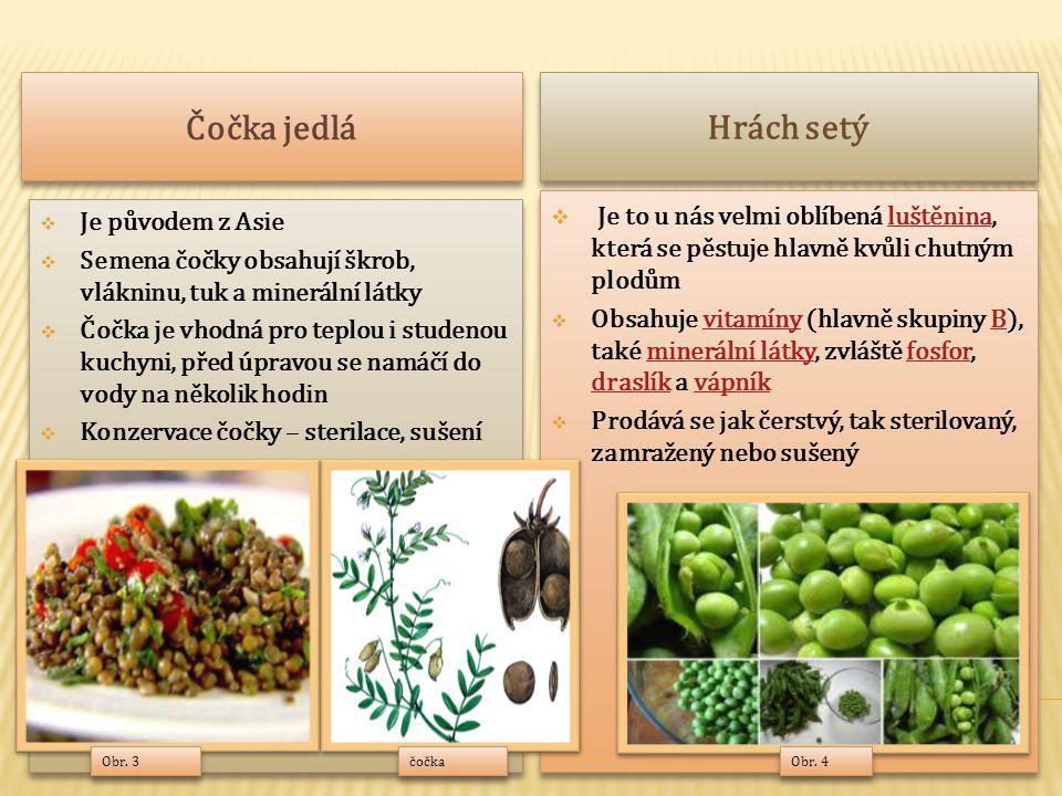 Čočka jedlá Hrách setý. Je to u nás velmi oblíbená luštěnina, která se pěstuje hlavně kvůli chutným plodům.