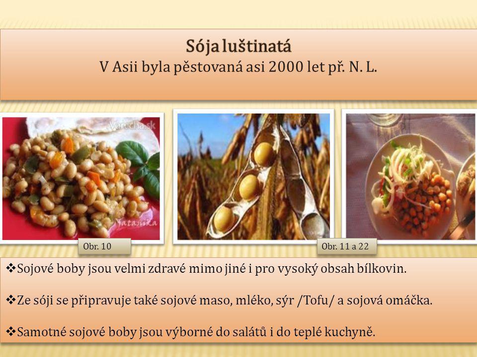 Sója luštinatá V Asii byla pěstovaná asi 2000 let př. N. L.