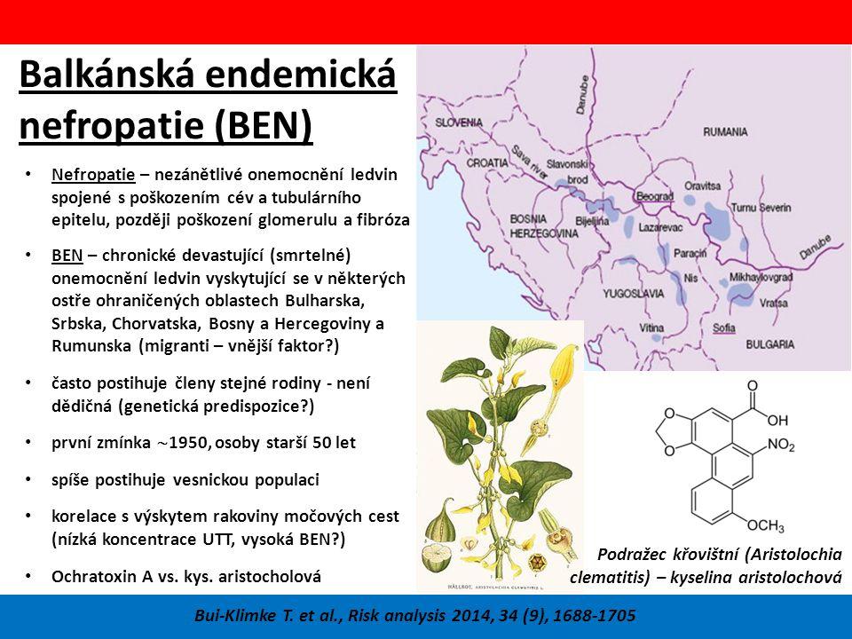 Balkánská endemická nefropatie (BEN)