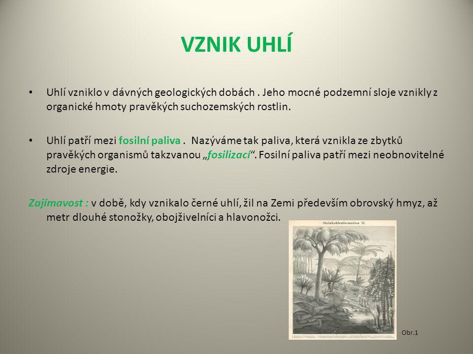 VZNIK UHLÍ Uhlí vzniklo v dávných geologických dobách . Jeho mocné podzemní sloje vznikly z organické hmoty pravěkých suchozemských rostlin.