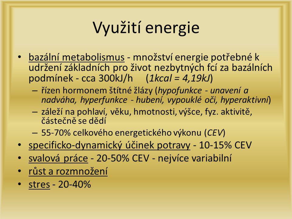 Využití energie