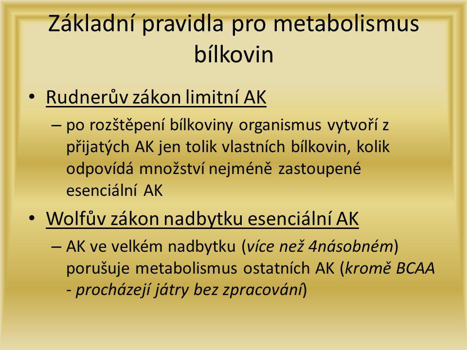 Základní pravidla pro metabolismus bílkovin
