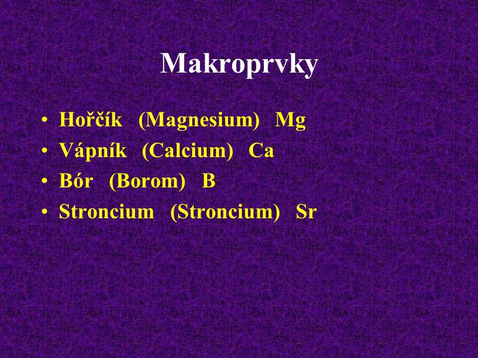 Makroprvky Hořčík (Magnesium) Mg Vápník (Calcium) Ca Bór (Borom) B