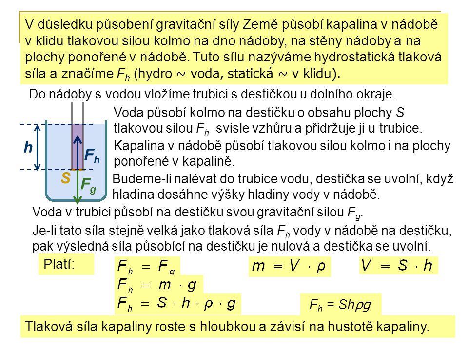 V důsledku působení gravitační síly Země působí kapalina v nádobě v klidu tlakovou silou kolmo na dno nádoby, na stěny nádoby a na plochy ponořené v nádobě. Tuto sílu nazýváme hydrostatická tlaková síla a značíme Fh (hydro ~ voda, statická ~ v klidu).