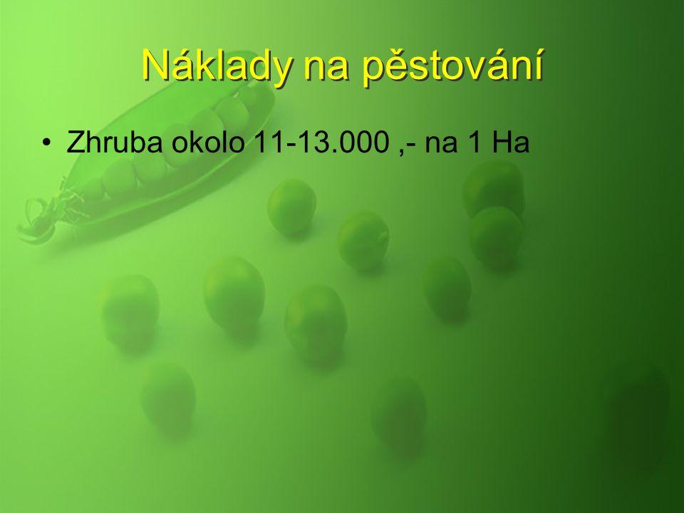 Náklady na pěstování Zhruba okolo 11-13.000 ,- na 1 Ha