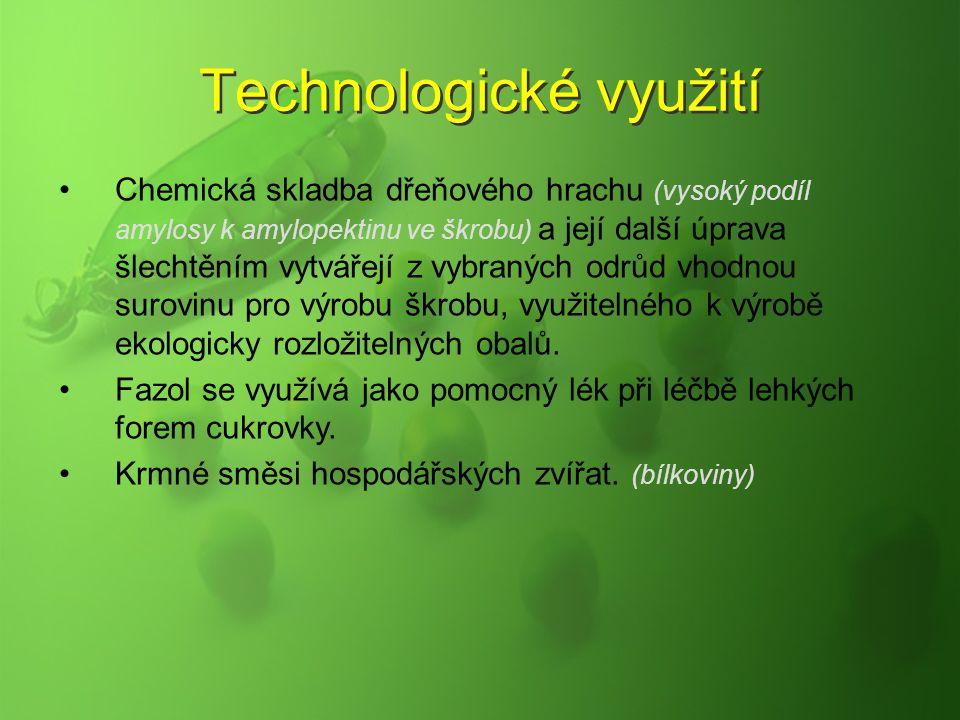Technologické využití