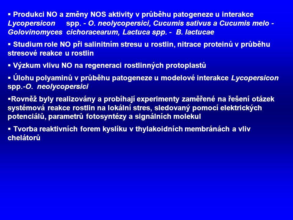 Produkci NO a změny NOS aktivity v průběhu patogeneze u interakce Lycopersicon spp. - O. neolycopersici, Cucumis sativus a Cucumis melo - Golovinomyces cichoracearum, Lactuca spp. - B. lactucae