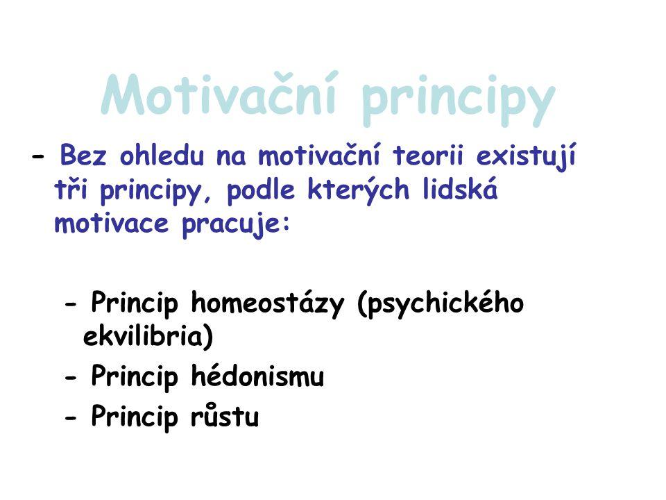 Motivační principy - Bez ohledu na motivační teorii existují tři principy, podle kterých lidská motivace pracuje:
