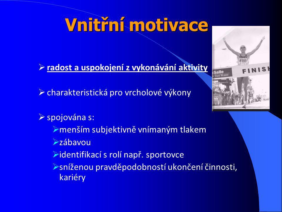 Vnitřní motivace radost a uspokojení z vykonávání aktivity