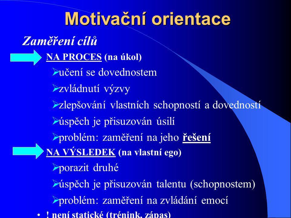Motivační orientace Zaměření cílů učení se dovednostem zvládnutí výzvy