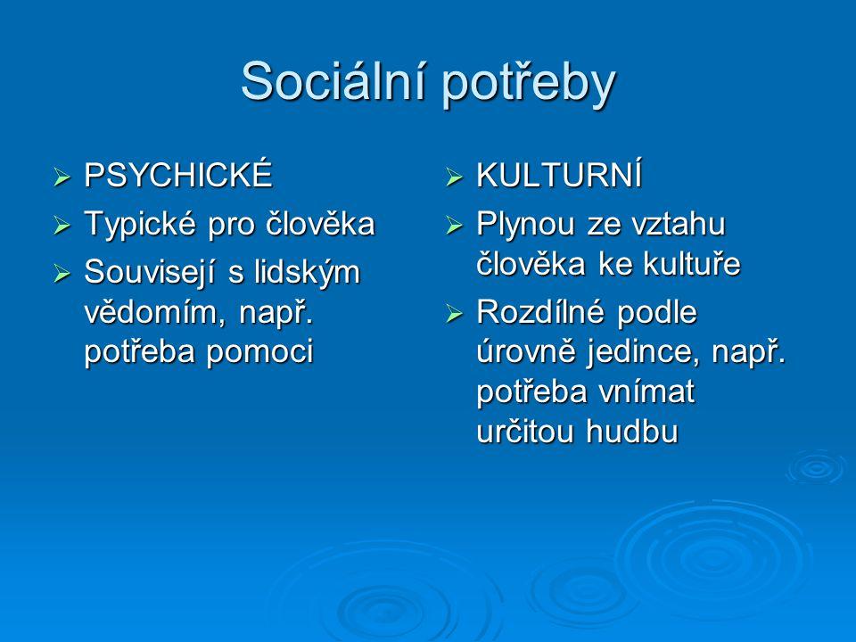Sociální potřeby PSYCHICKÉ Typické pro člověka