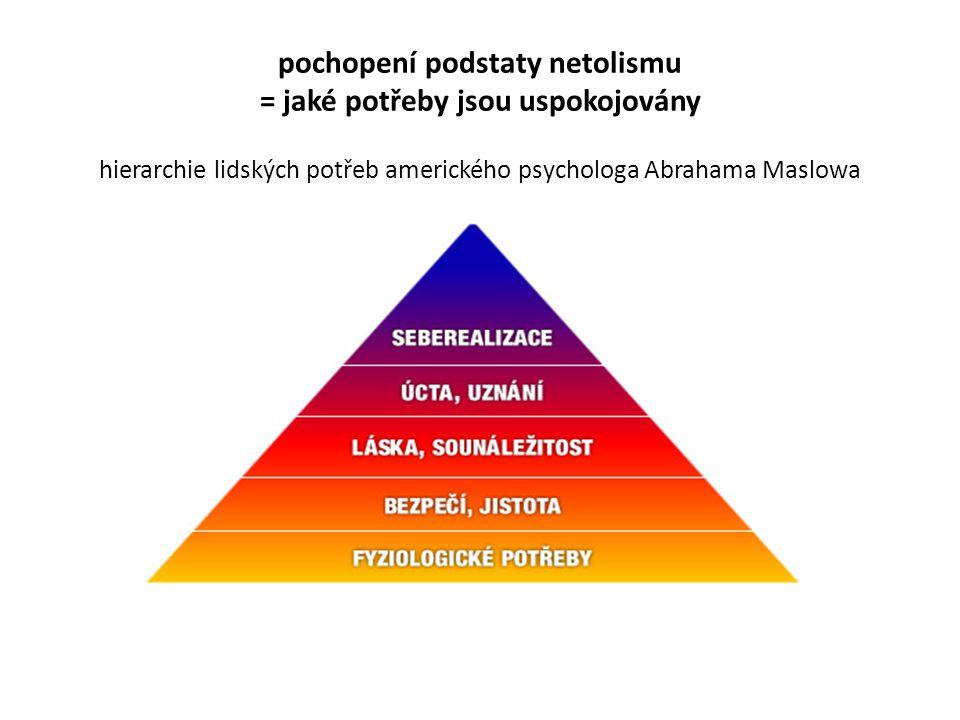 pochopení podstaty netolismu = jaké potřeby jsou uspokojovány