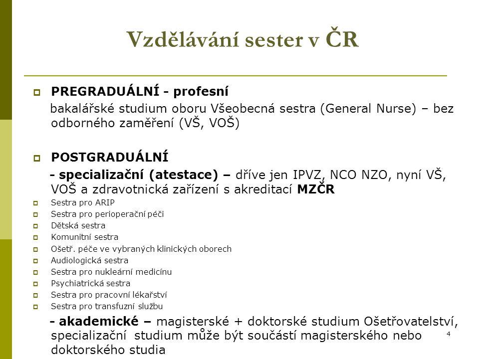 Vzdělávání sester v ČR PREGRADUÁLNÍ - profesní