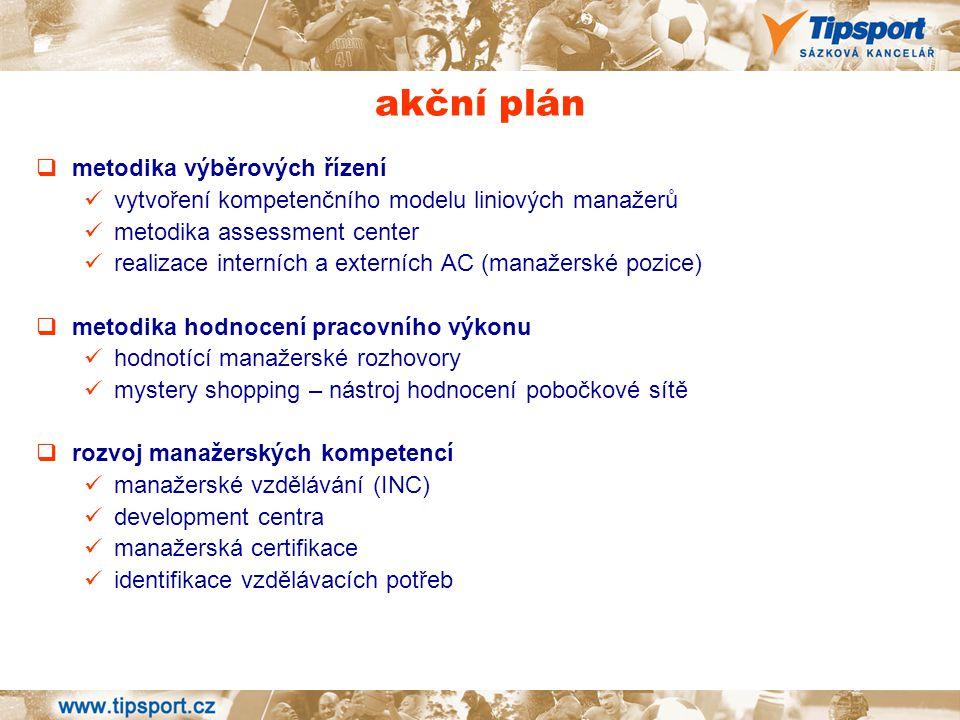 akční plán metodika výběrových řízení