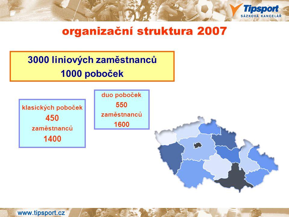 organizační struktura 2007