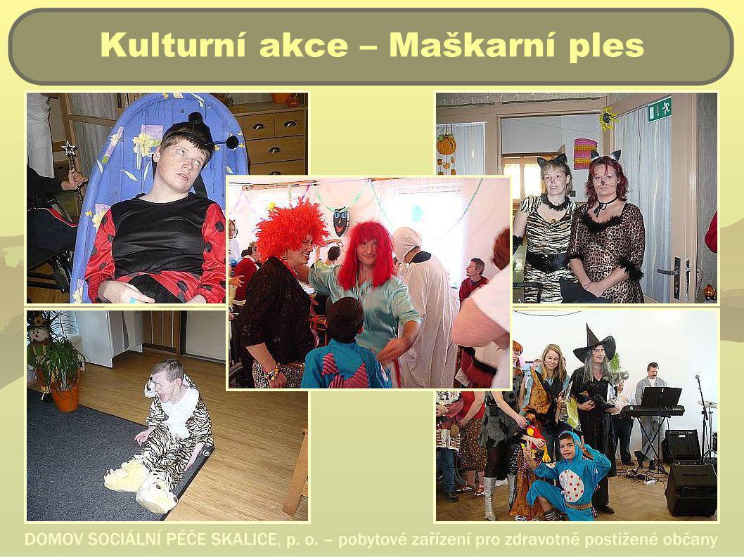 Kulturní akce – Maškarní ples