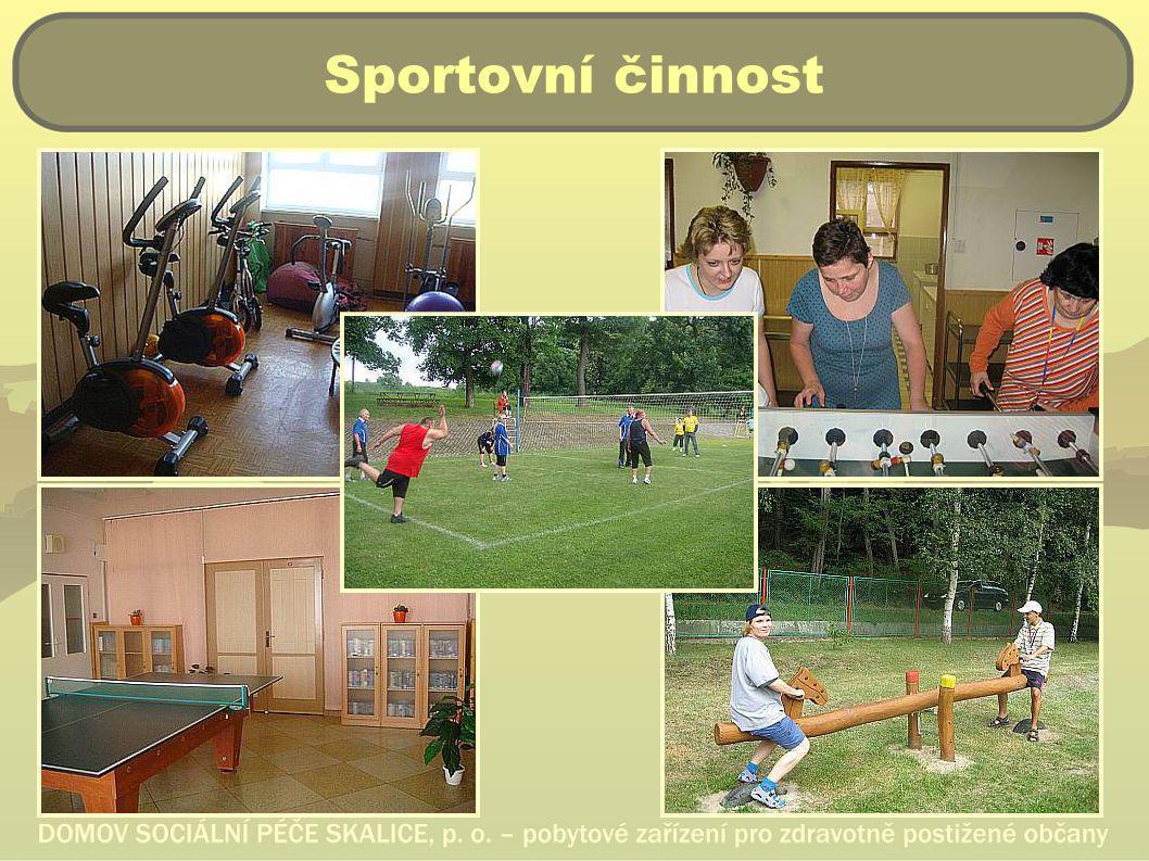 Sportovní činnost