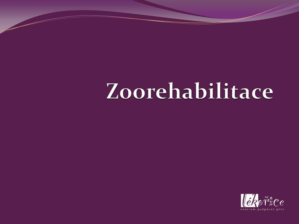 Zoorehabilitace