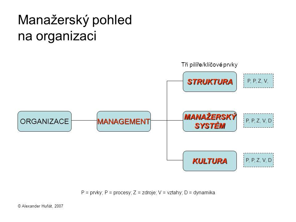 Manažerský pohled na organizaci