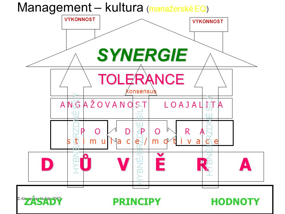 Management – kultura (manažerské EQ)