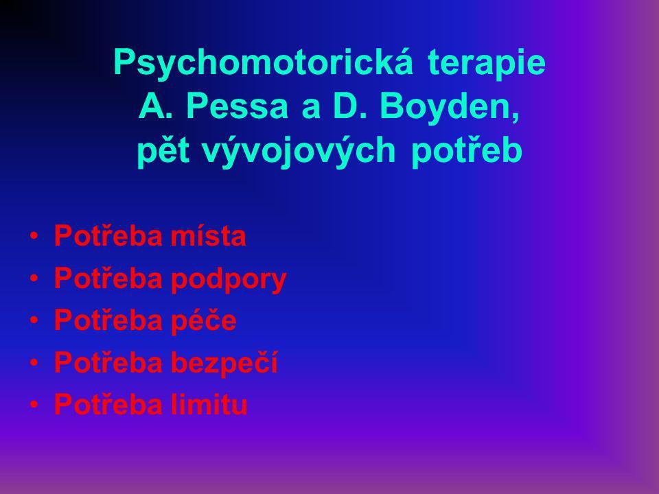 Psychomotorická terapie A. Pessa a D. Boyden, pět vývojových potřeb
