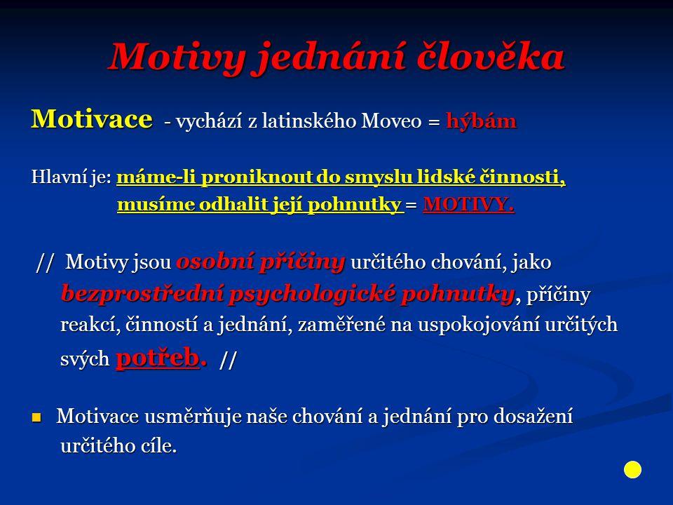 Motivy jednání člověka