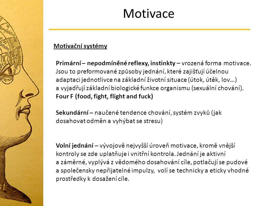 Motivace Motivační systémy