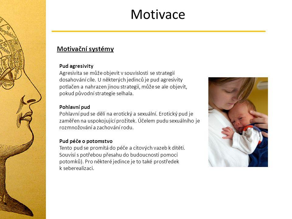 Motivace Motivační systémy Pud agresivity